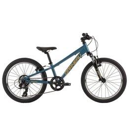 """LOUIS GARNEAU louis garneau trust 201 boy 20"""" bike"""