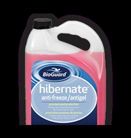 BIOGUARD BIOGUARD HIBERNATE ANTI-FREEZE