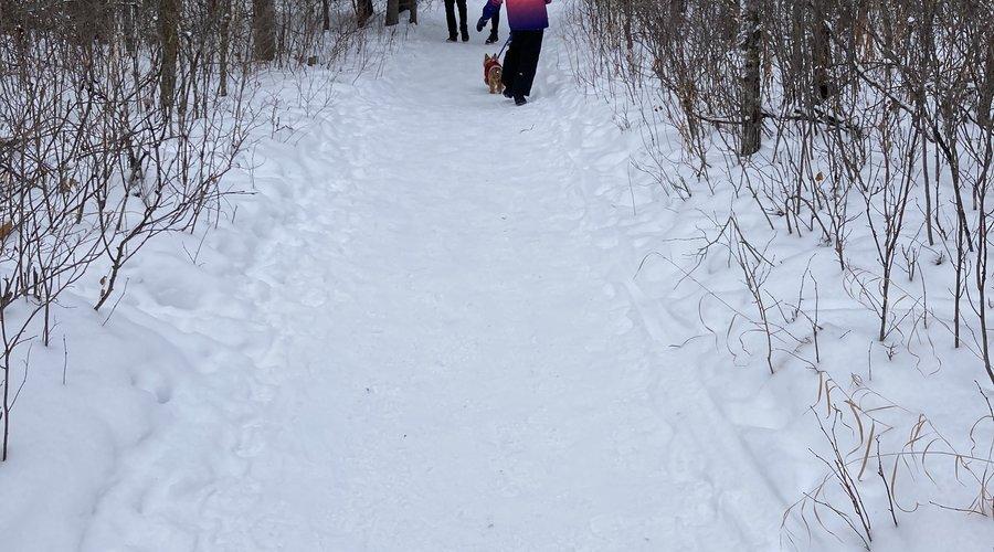 Great Winter Adventures Ideas