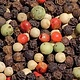 Peppercorn Blend
