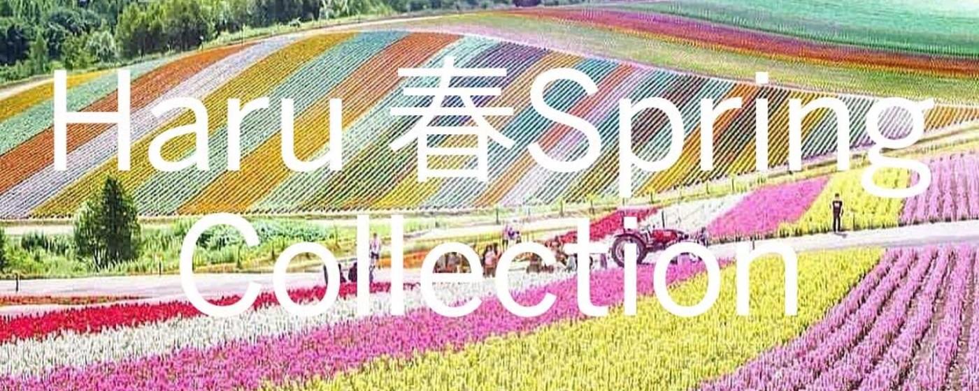 Haru Spring Collection