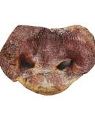 Vital Essentials Freeze-Dried Pig Snout