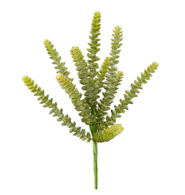 Succulent Pick