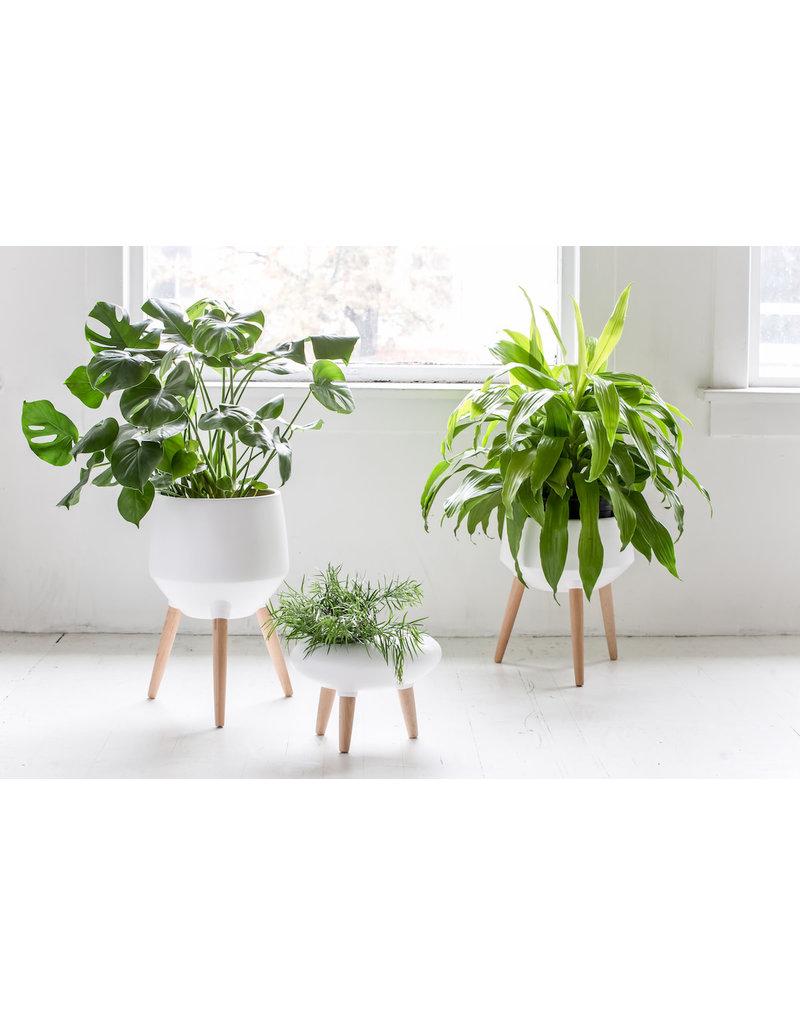 White Planter Medium