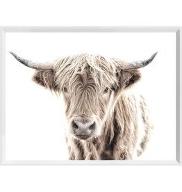 HIGHLAND COW - MINI