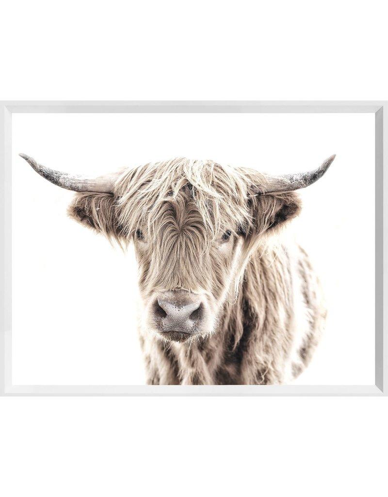 HIGHLAND COW - MINI