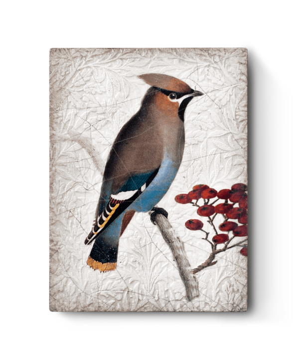 T485 Waxwing
