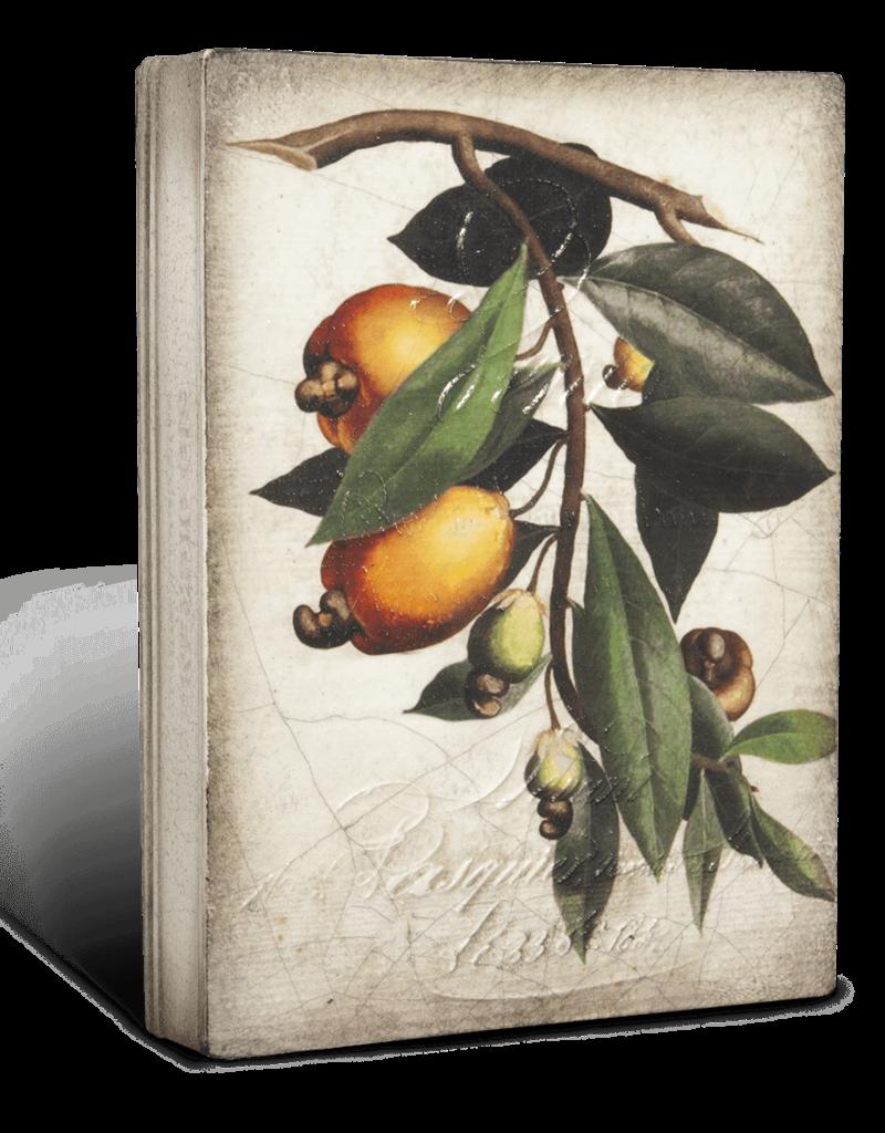 Sid Dickens T446 Cashew Apple