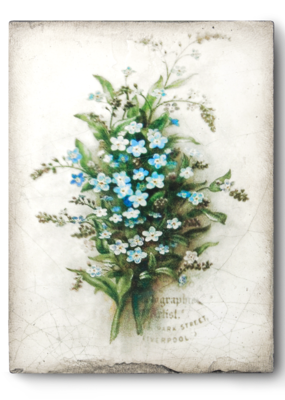 Sid Dickens T444 Forget me not