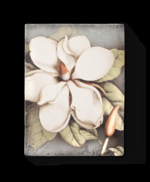 T301 Magnolia