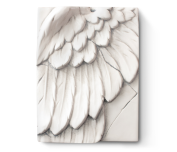 T05 Angels Wing