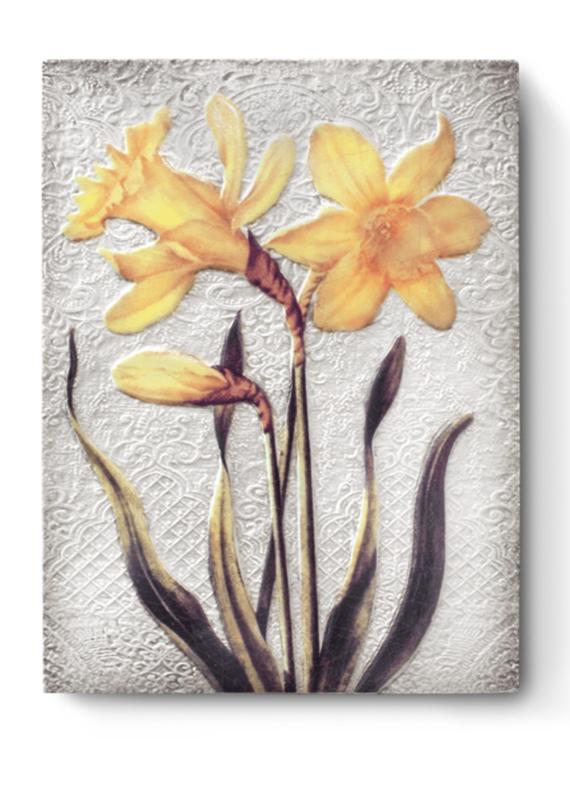 Sid Dickens T509 Daffodils