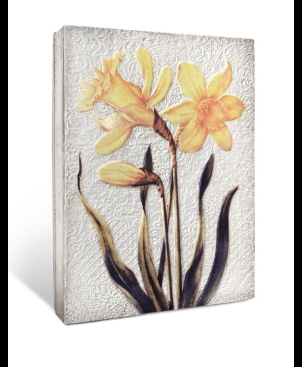 T509 Daffodils