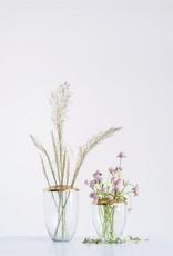 CREATIVE CO-OP Glass Vase With Metal Frog Lid, Medium
