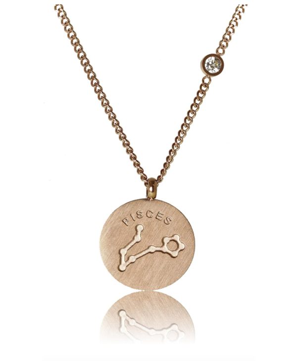 Pisces Necklace/ Brushed Stainless Steel