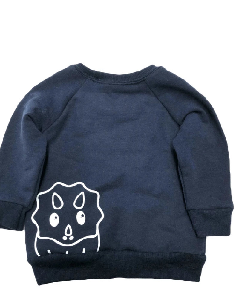 Portage & Main The Can't Have To Walk My Dinosaur Youth Sweatshirt Navy
