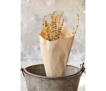 Dried Leonurus Bunch, Mustard