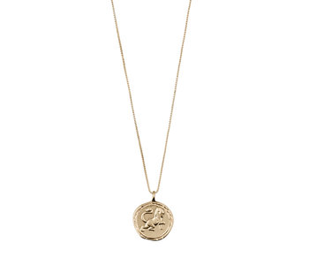 Horoscope Crystal Necklace, Gold Plated
