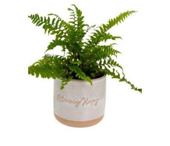 Blooming Happy Pot