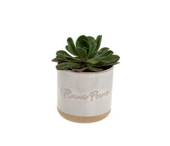 Flower Power Pot