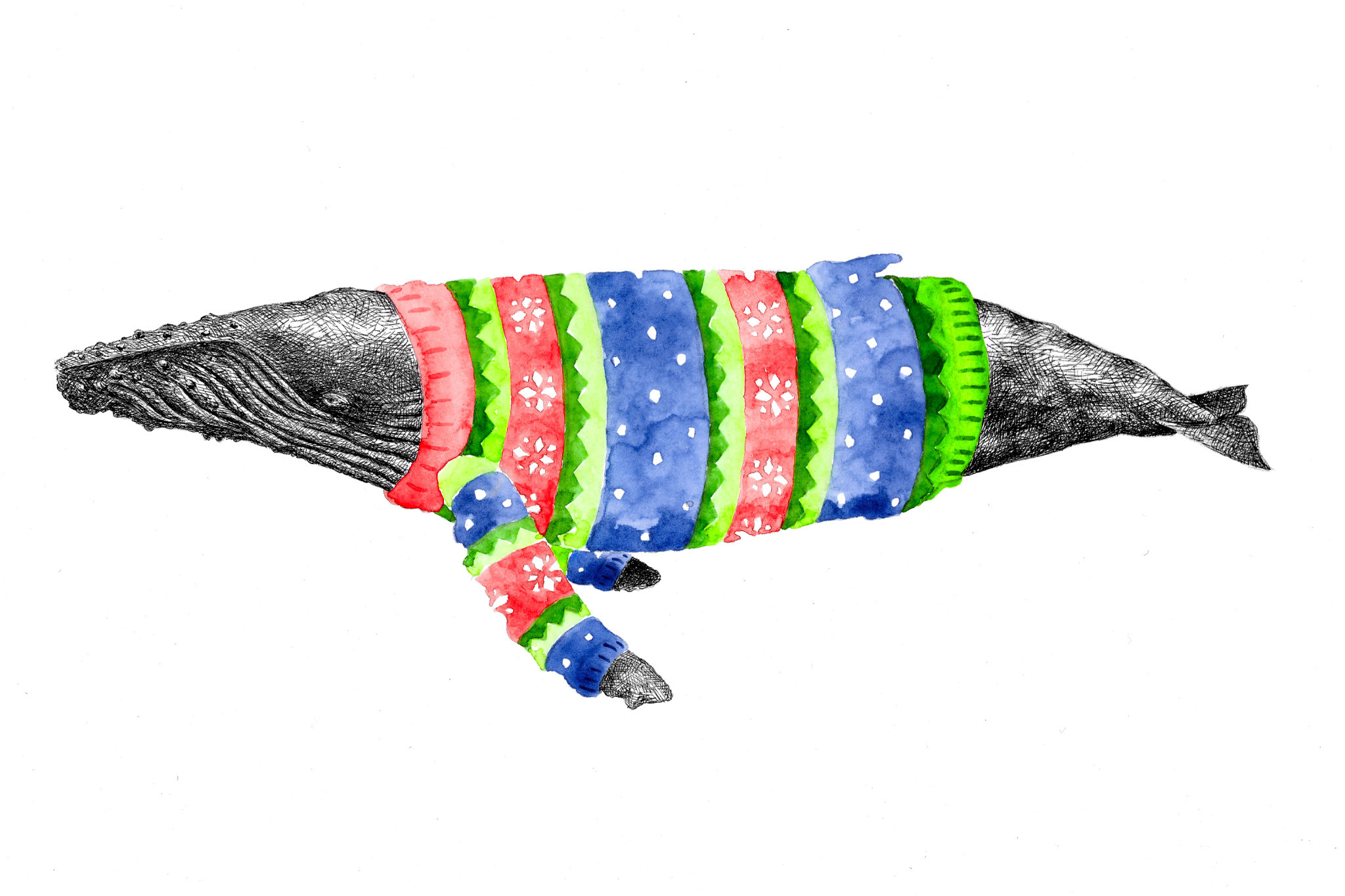 Winter Whale Art Card - Humpback