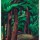 Boxed Notecards Emily Carr