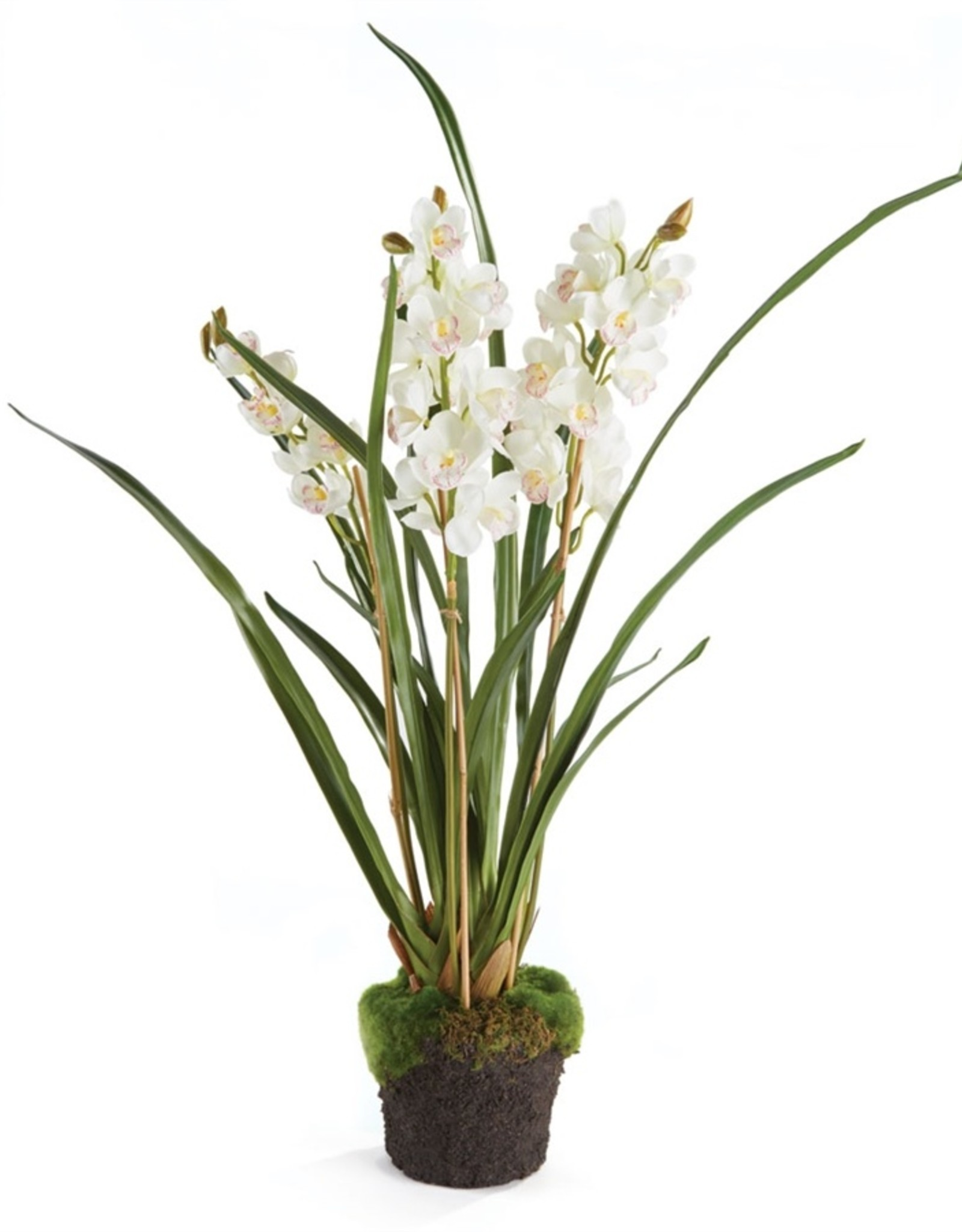 Napa Home and Garden Cymbidium Orchid Drop-In 36""