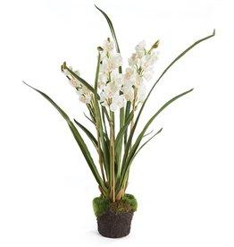 "Napa Home and Garden Cymbidium Orchid Drop-In 36"""