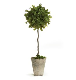 """Napa Home and Garden Faux Boxwood Potted Topiary 19"""""""