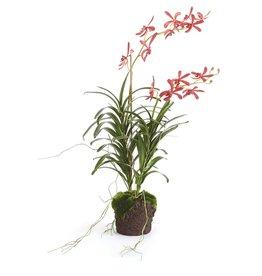 "Napa Home and Garden Vanda Orchid Drop-In  34.5"""