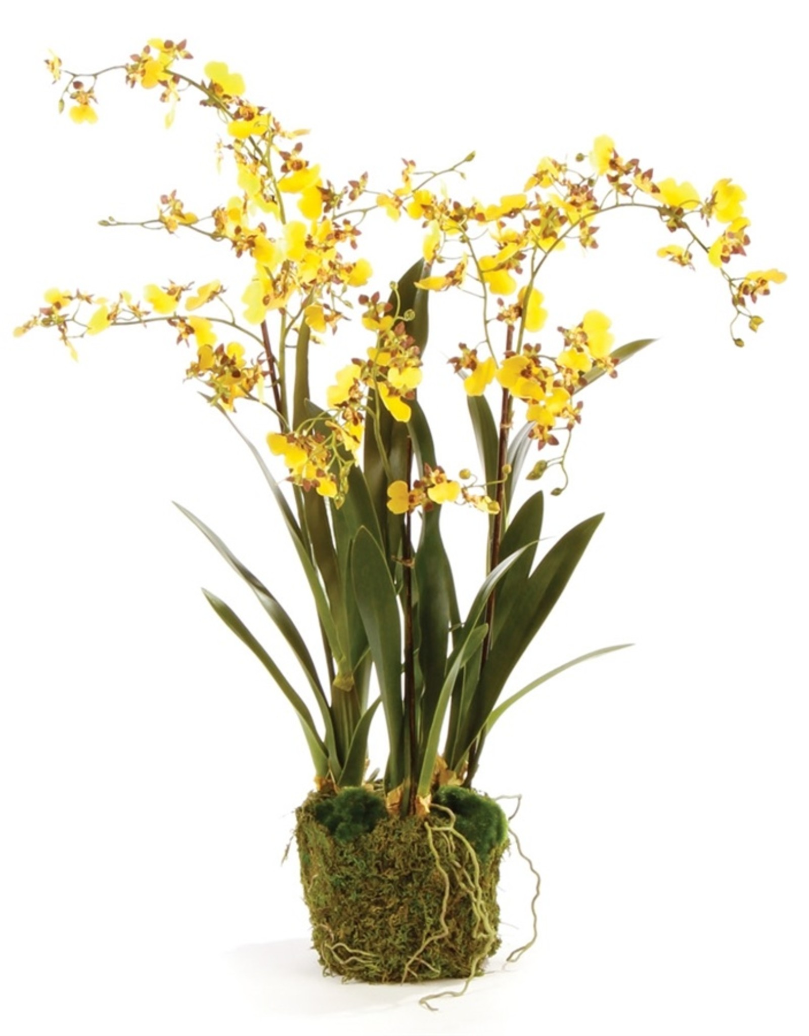 Napa Home and Garden Dancing Orchid - 32""