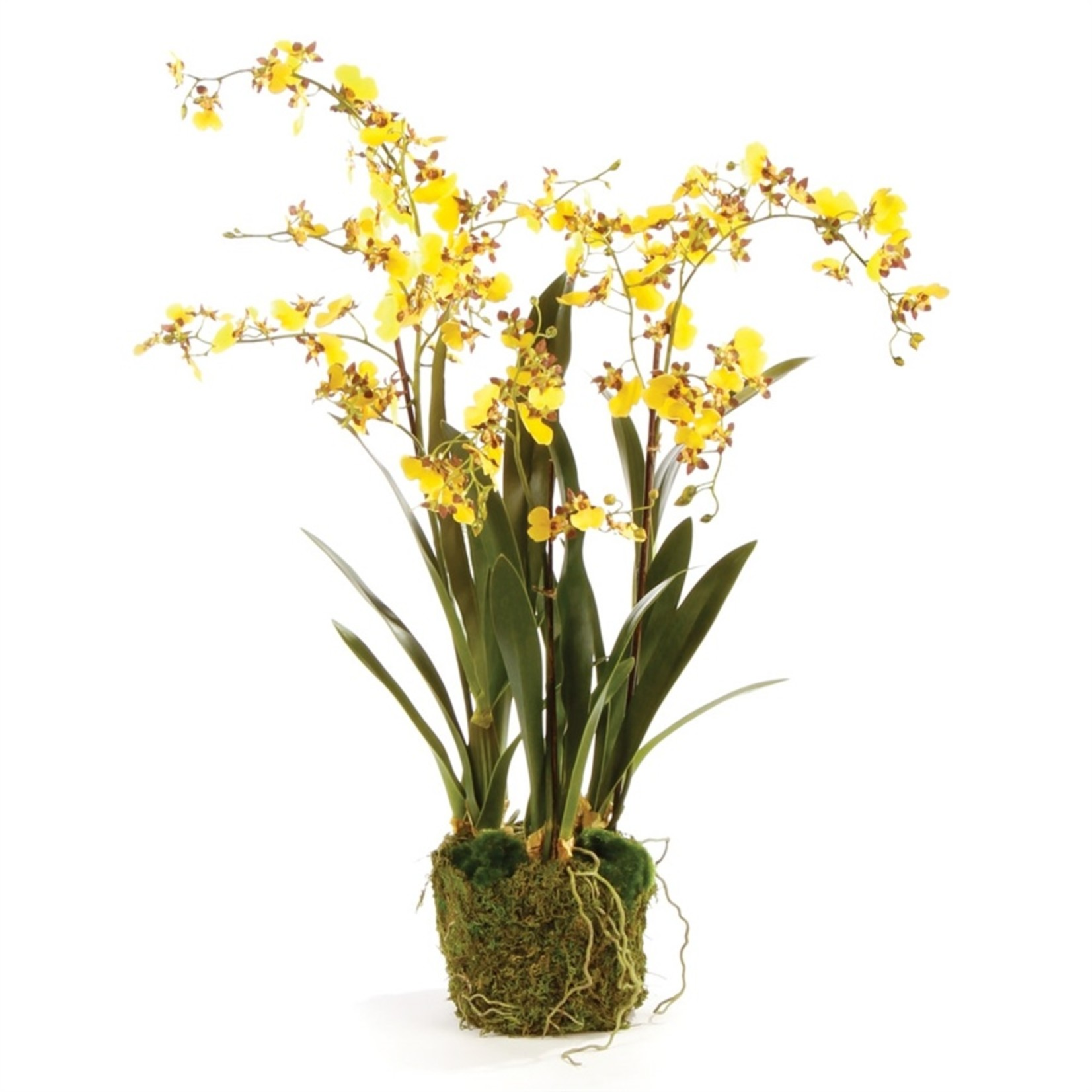 """Napa Home and Garden Dancing Orchid - 32"""""""