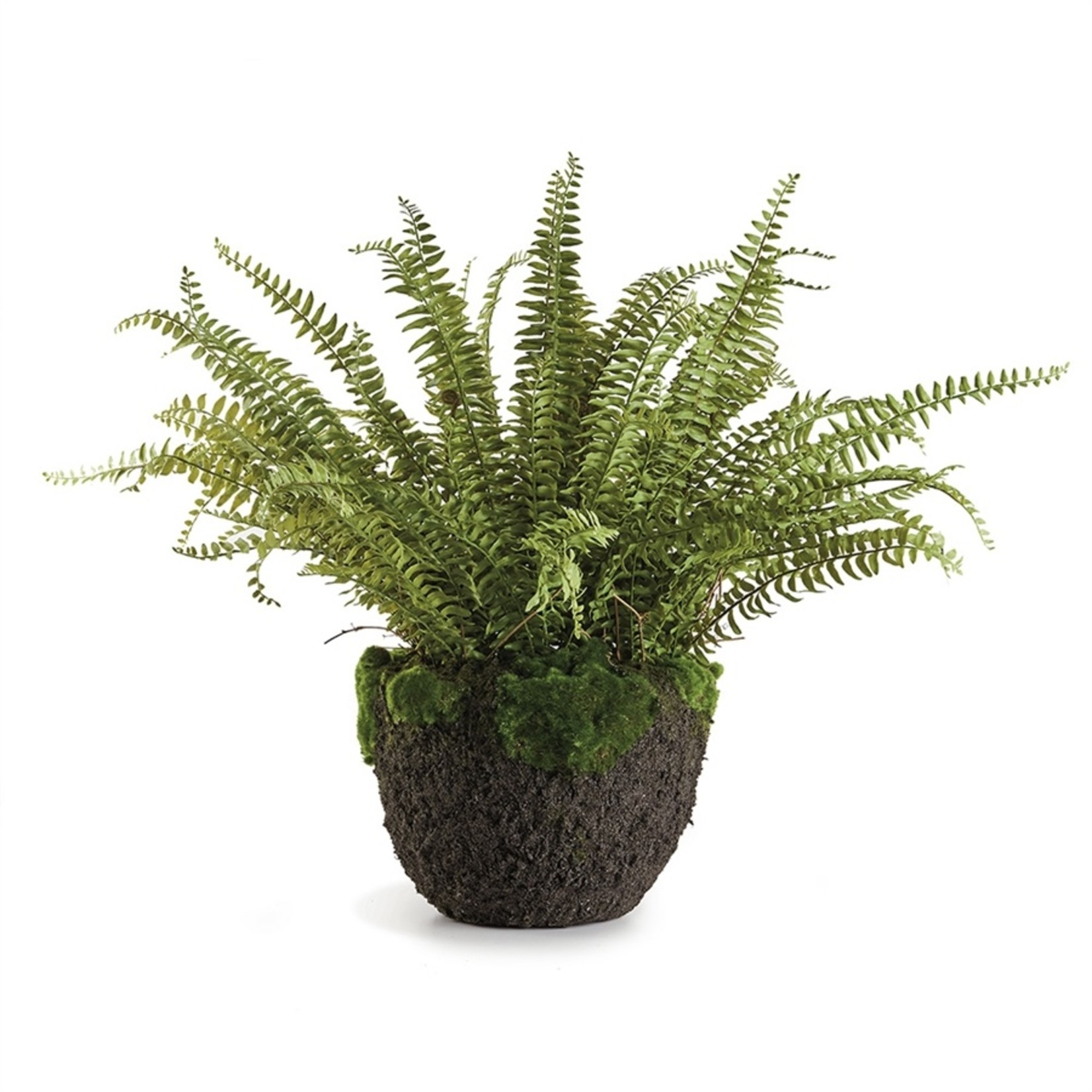 Napa Home and Garden Grand Boston Fern - 30""