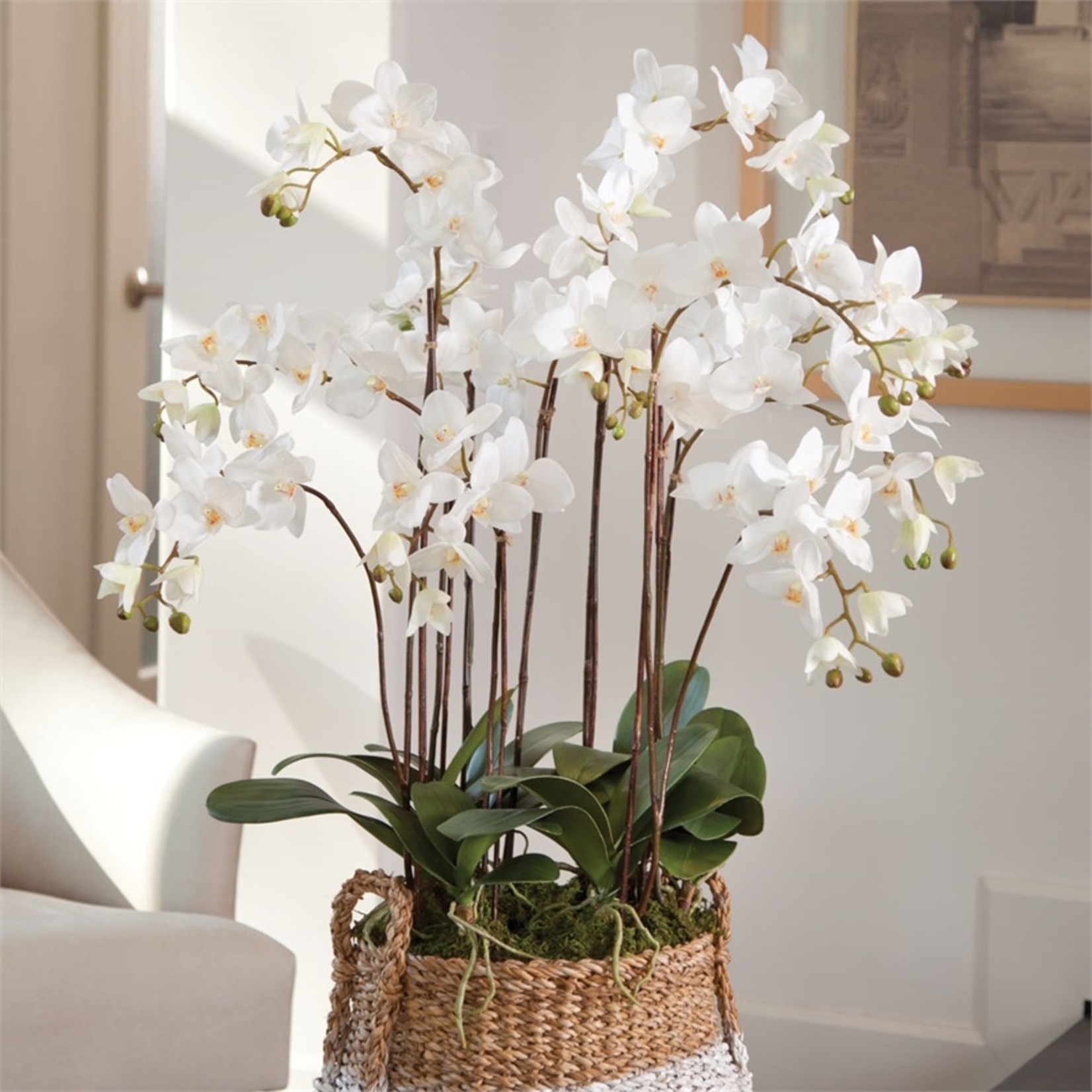 """Napa Home and Garden Phalaenopsis White Orchid Drop-In 36"""""""