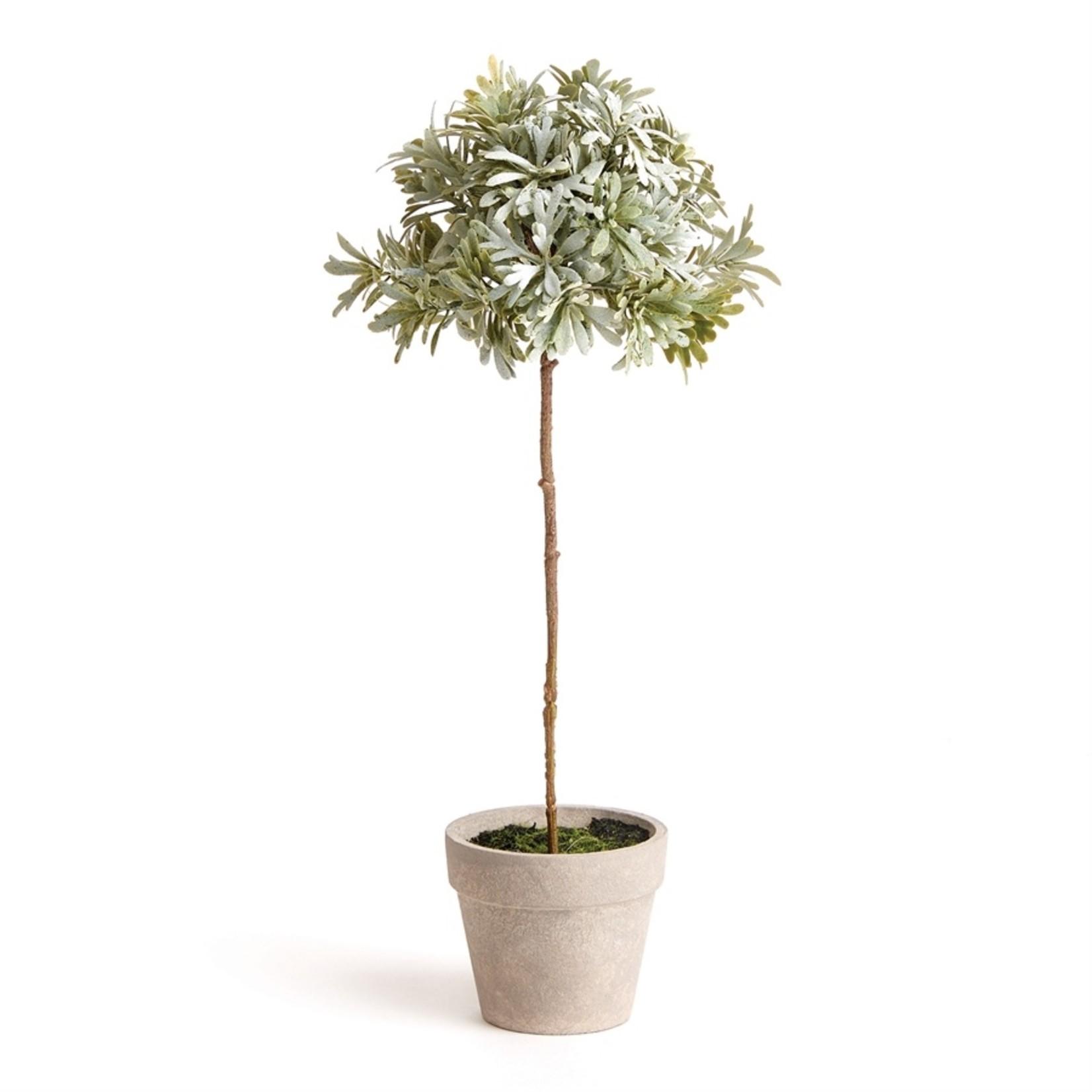 """Napa Home and Garden Senecio Topiary 13"""""""