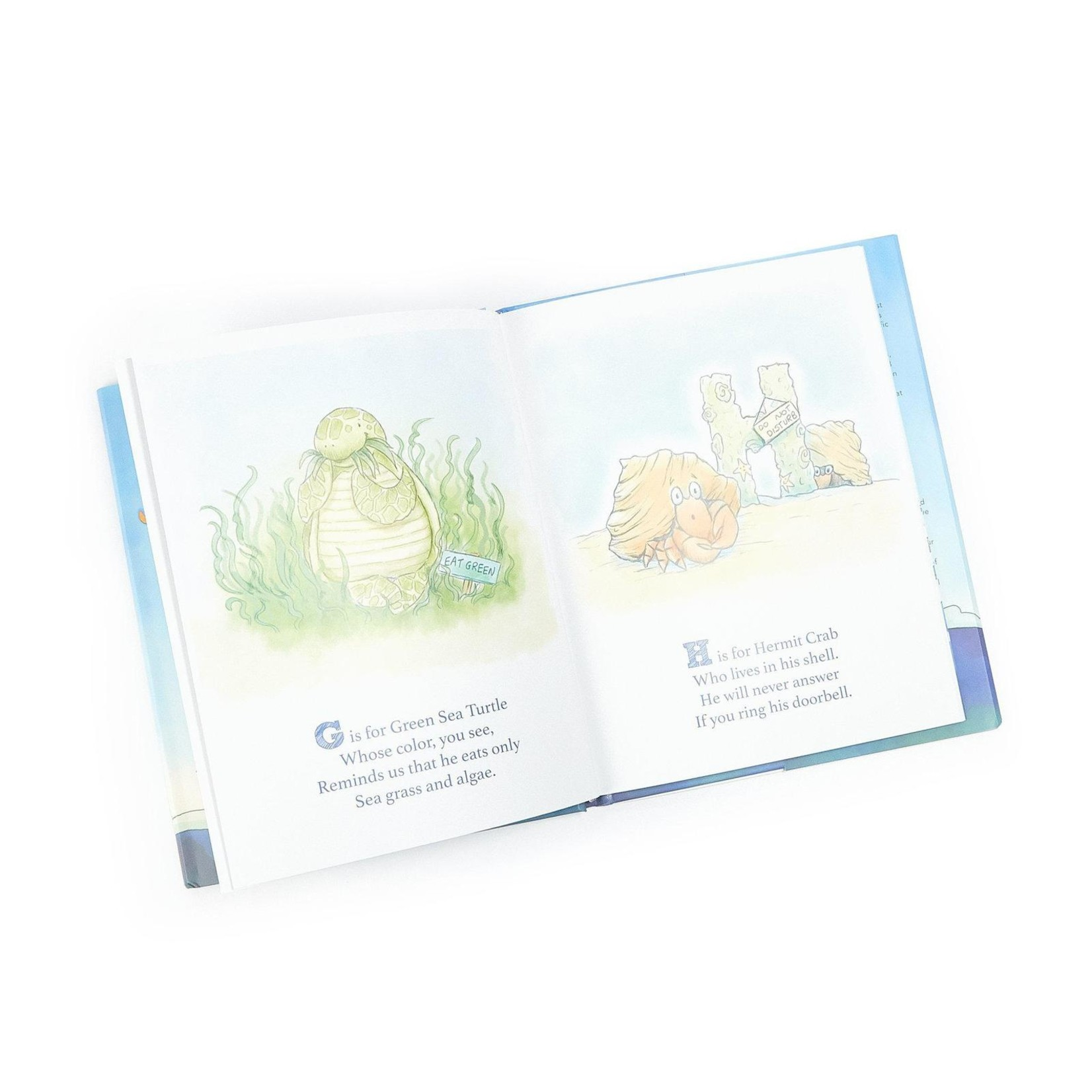 Bunnies By the Bay Avery the Aviator Explores the Sea A to Z