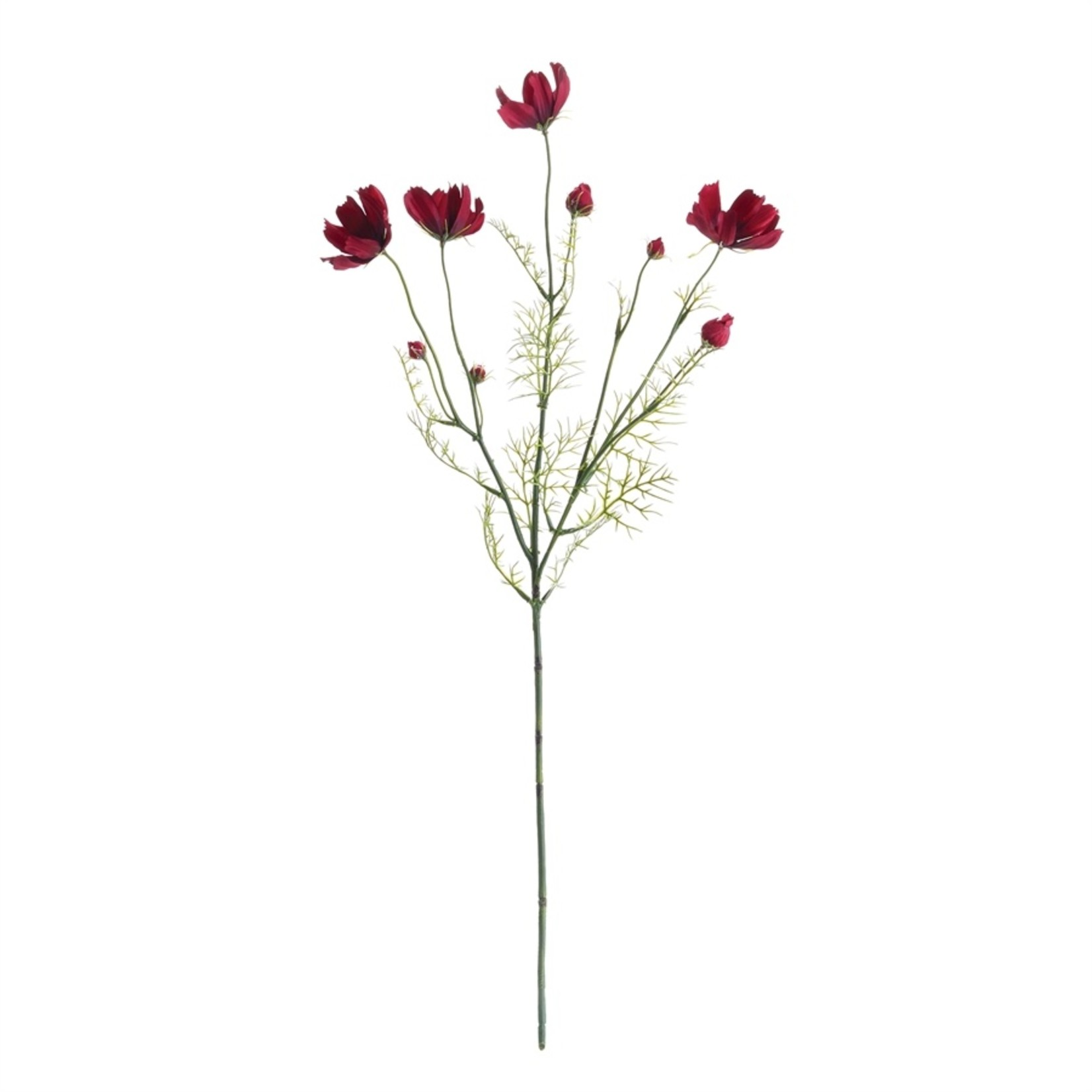 """Napa Home and Garden Cosmos Stem in Chocolate - 26"""""""