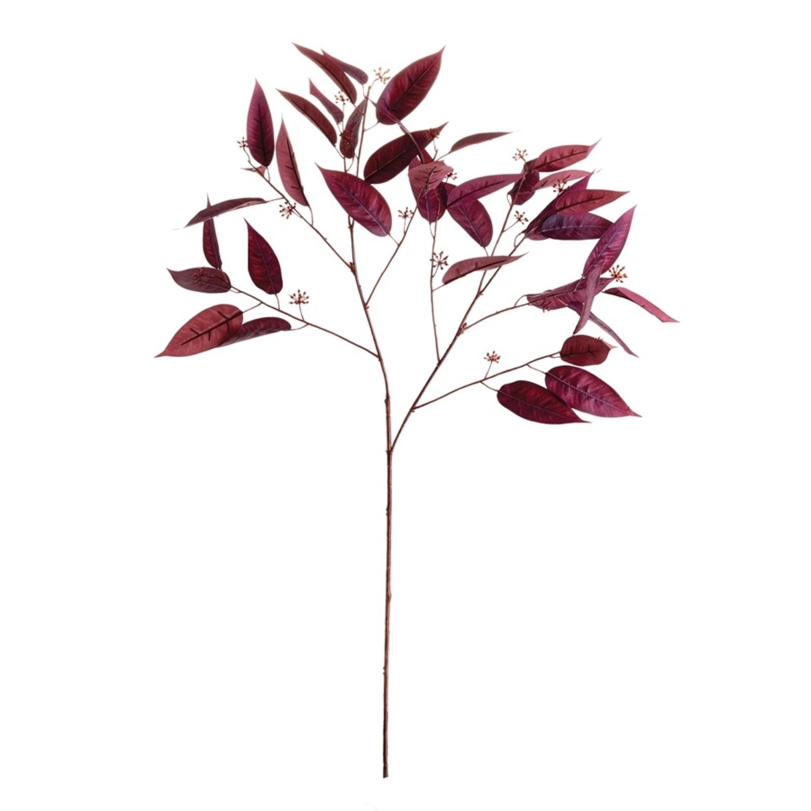 """Napa Home and Garden Eucalyptus Seed Branch - 36.5"""""""