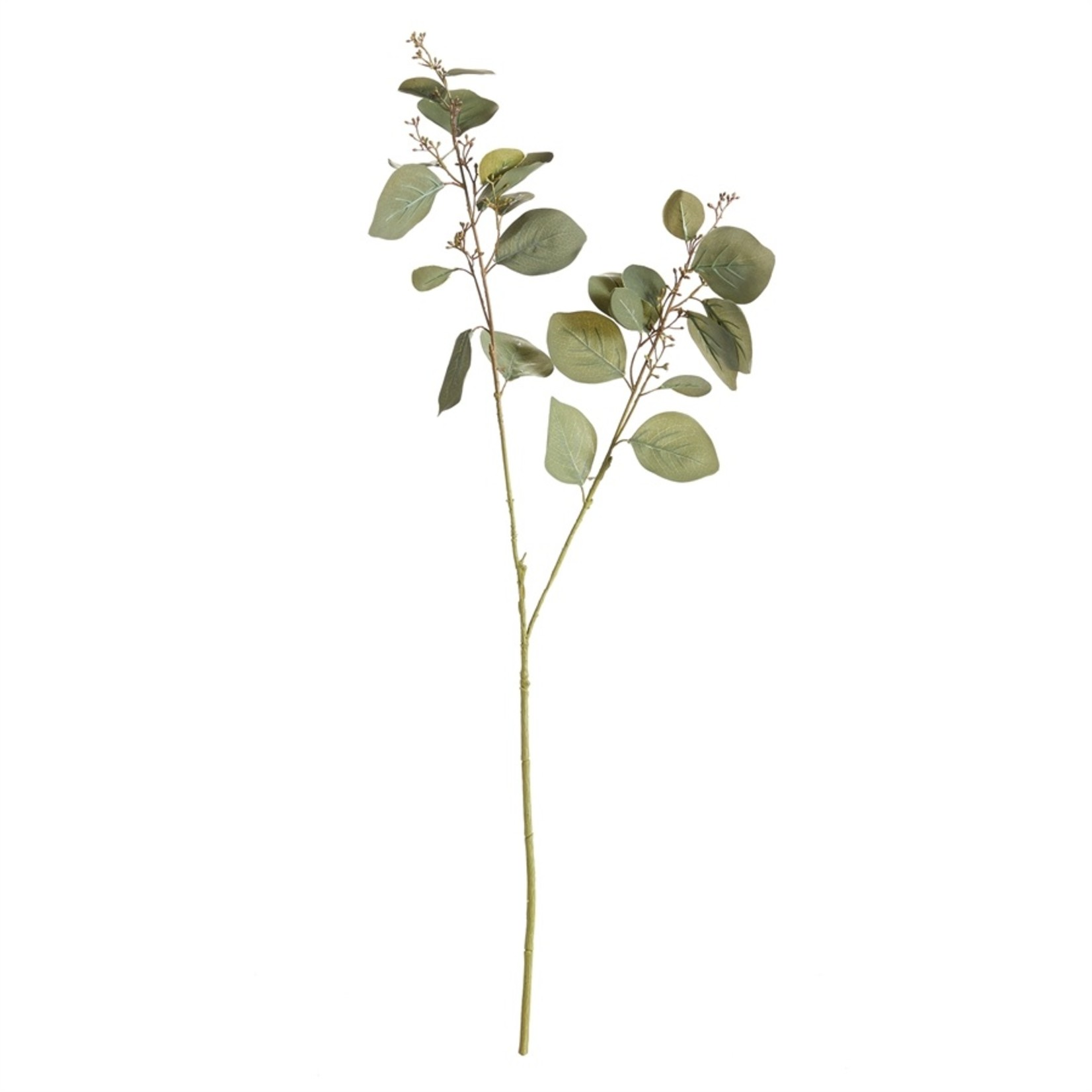 """Napa Home and Garden Eucalyptus Silver Dollar Branch - 32"""""""