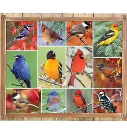 Springbok Songbirds 100pc