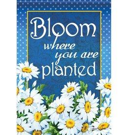 Carson C Bloom Where Planted GF