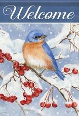 Carson C Bluebird & Berries