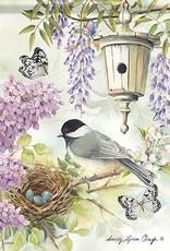 Carson C Chickadee Birdsong
