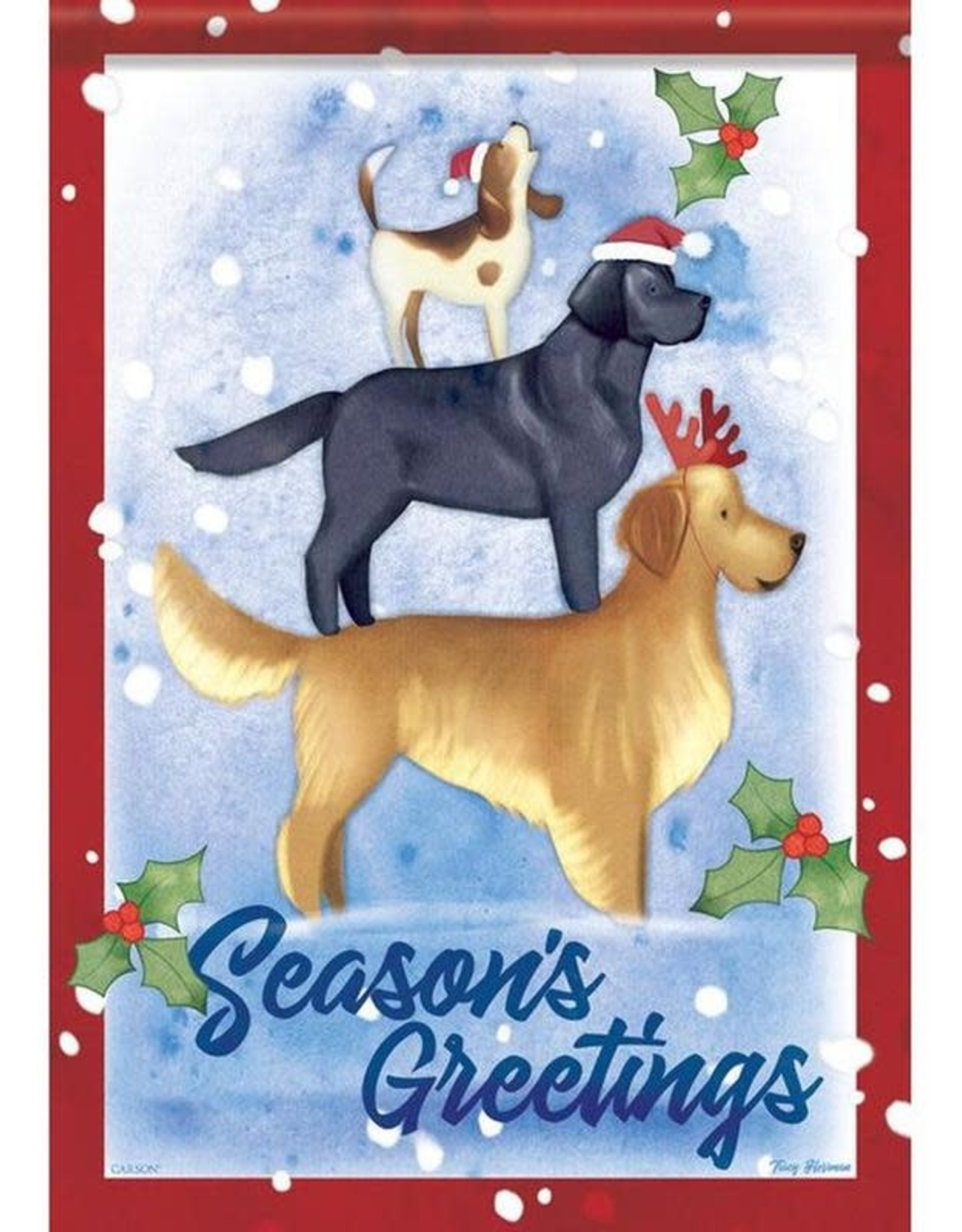 Carson C Christmas Dogs GF