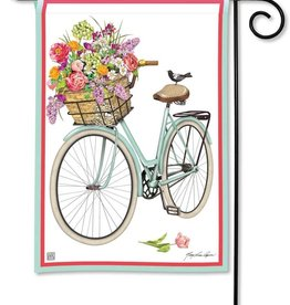 Studio M GF Bicycle Ride