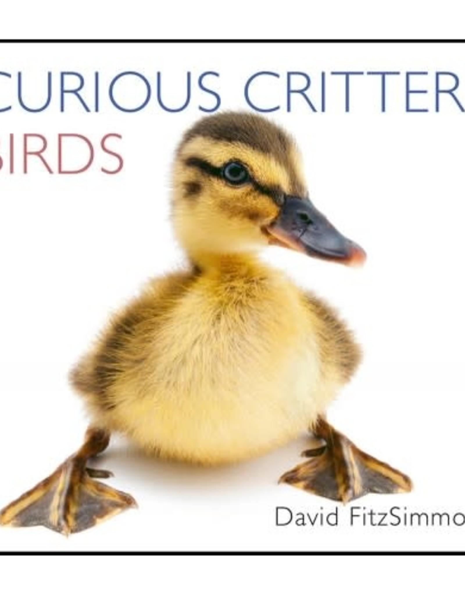 Wild Iris Publishing Curious Critters Birds book