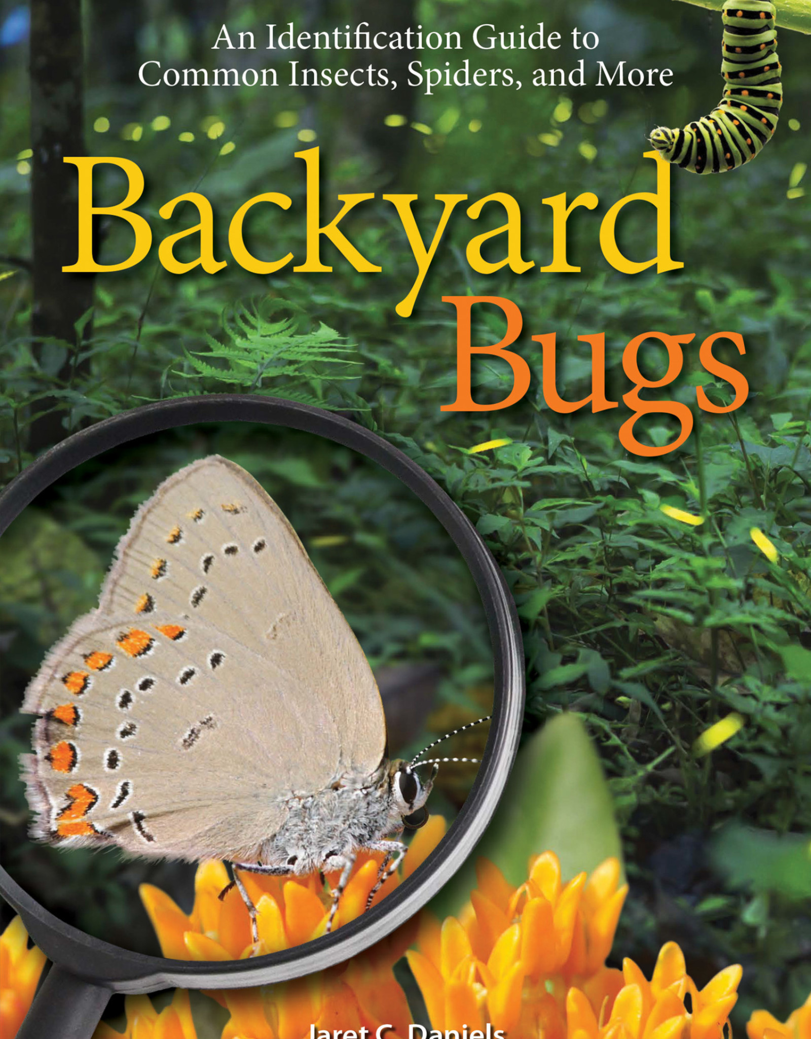 AdventureKEEN Book Backyard Bugs