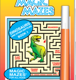 Lee Publications Activity Book Dino Maze