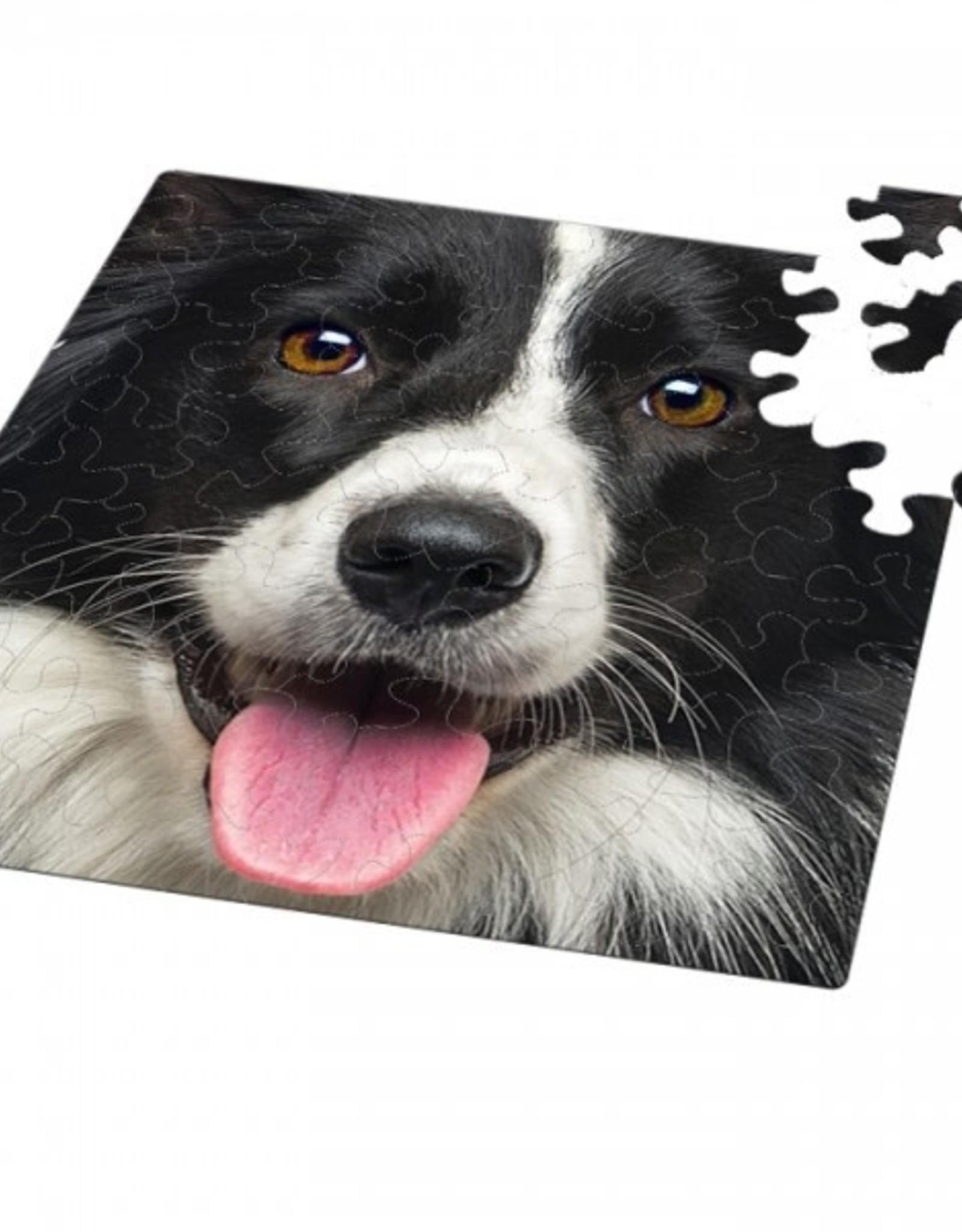 Curiosi 66pc Q Puzzle Dog