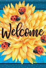 Carson C Ladybug Life GF